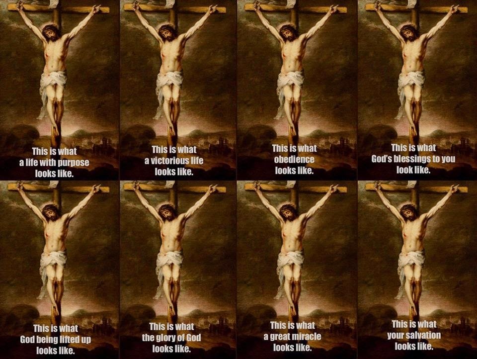 cross.obedience